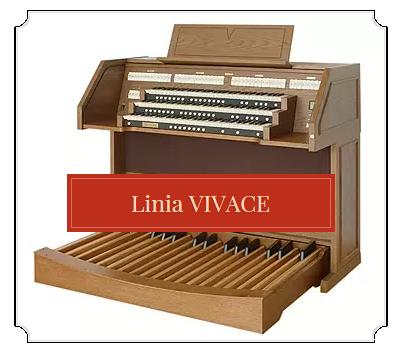 linia_vivace