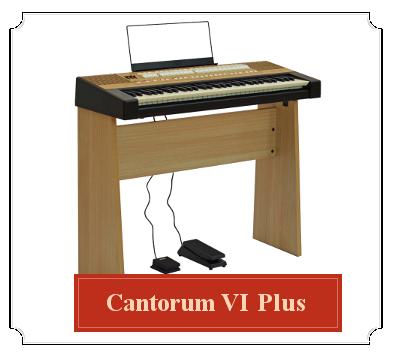 cantorum-VI-plus-viscount