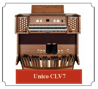 unico_CLV7